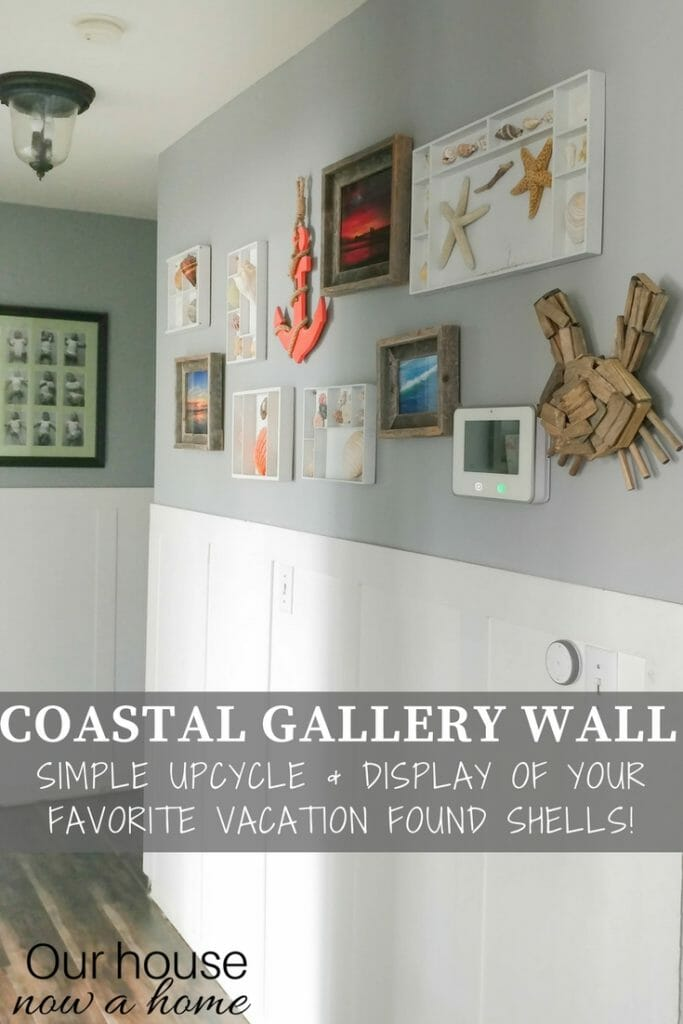 DIY coastal gallery wall and shell display. Simple way to display those vacation finds from the beach!