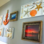 From the archives, shell display and coastal gallery wall