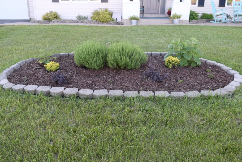 center planter ideas
