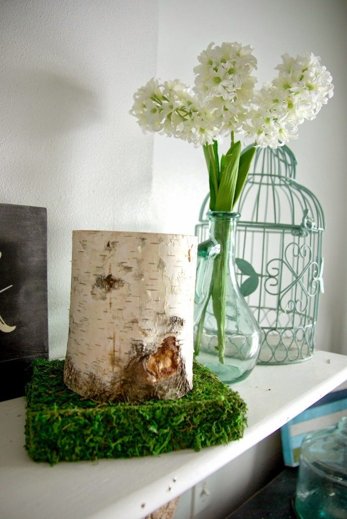 moss-diy-decor-685x1024