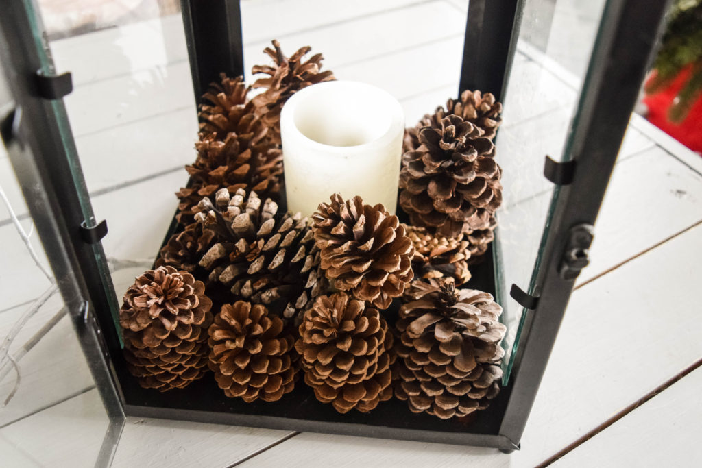 decorating-with-pinecones_