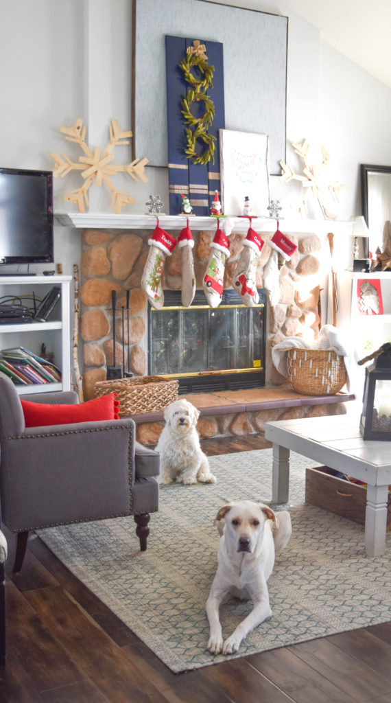 christmas-with-dogs-at-home_