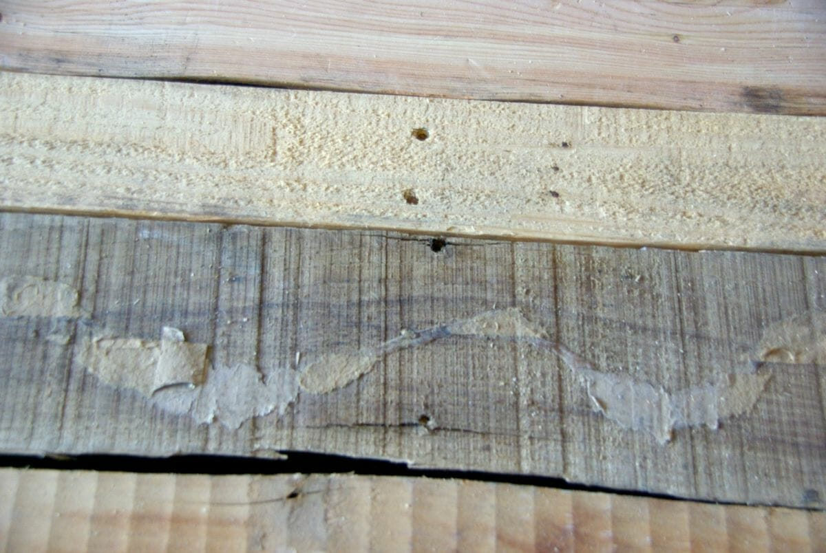 Diy wood pallet bench low cost and easy to make our for Rough cost to build a house