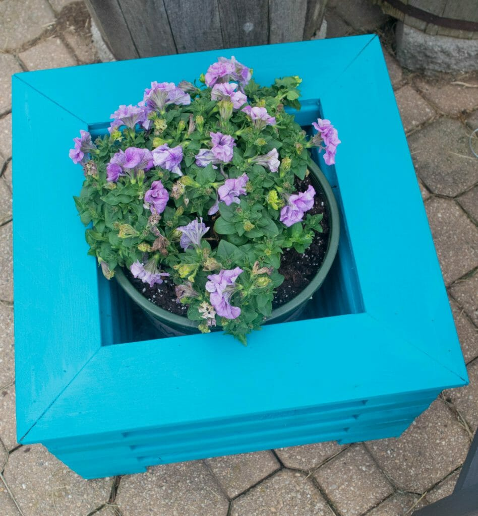 cute DIY flower planter